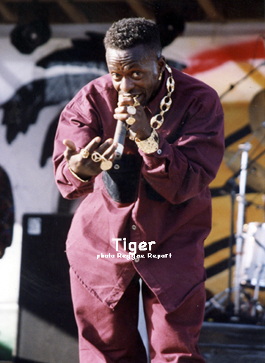 Tiger - Prince of the Dancehall