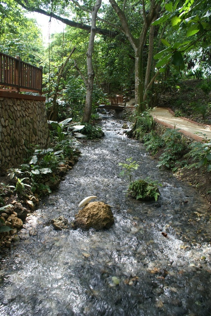 Beautiful stream at Park's entrance
